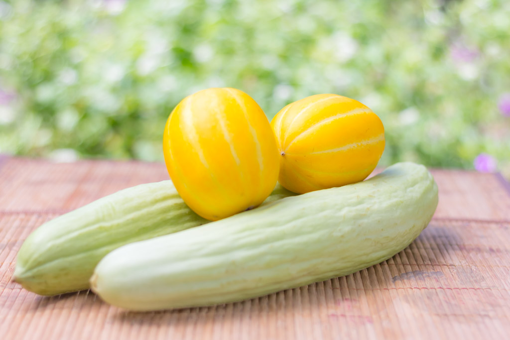 Armenian Cucumbers and Korean Melons