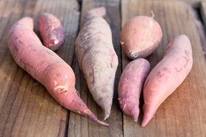 Selection of mixed sweet potatoes