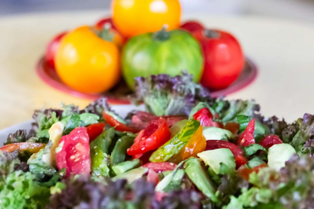 Close up view of Summer Tomatoes & Avocado Salad on bed of red leaf lettuce (Lollo Rosso) with whole tomatoes behind.
