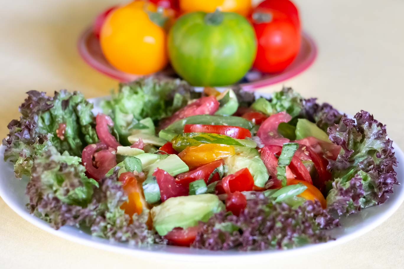 Summer Tomatoes & Avocado Salad on bed of red leaf lettuce with whole tomatoes behind.